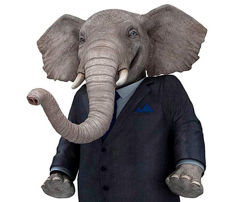 B11_Elephant_1